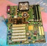 Материнская плата+память+видео карта+процессор AMD